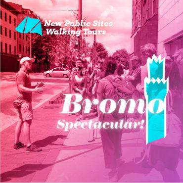 NPS Bromo Spectacular