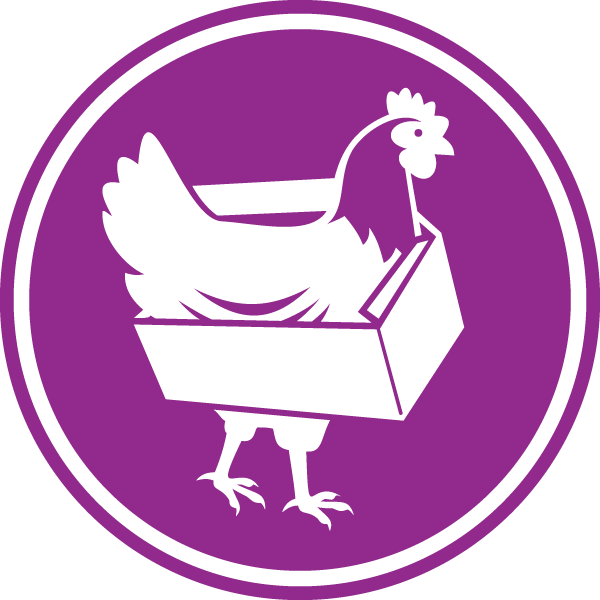 Dancing Forest Chicken Boxes
